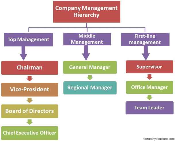 Company Management Hierarchy Structure | Hierarchy Structure